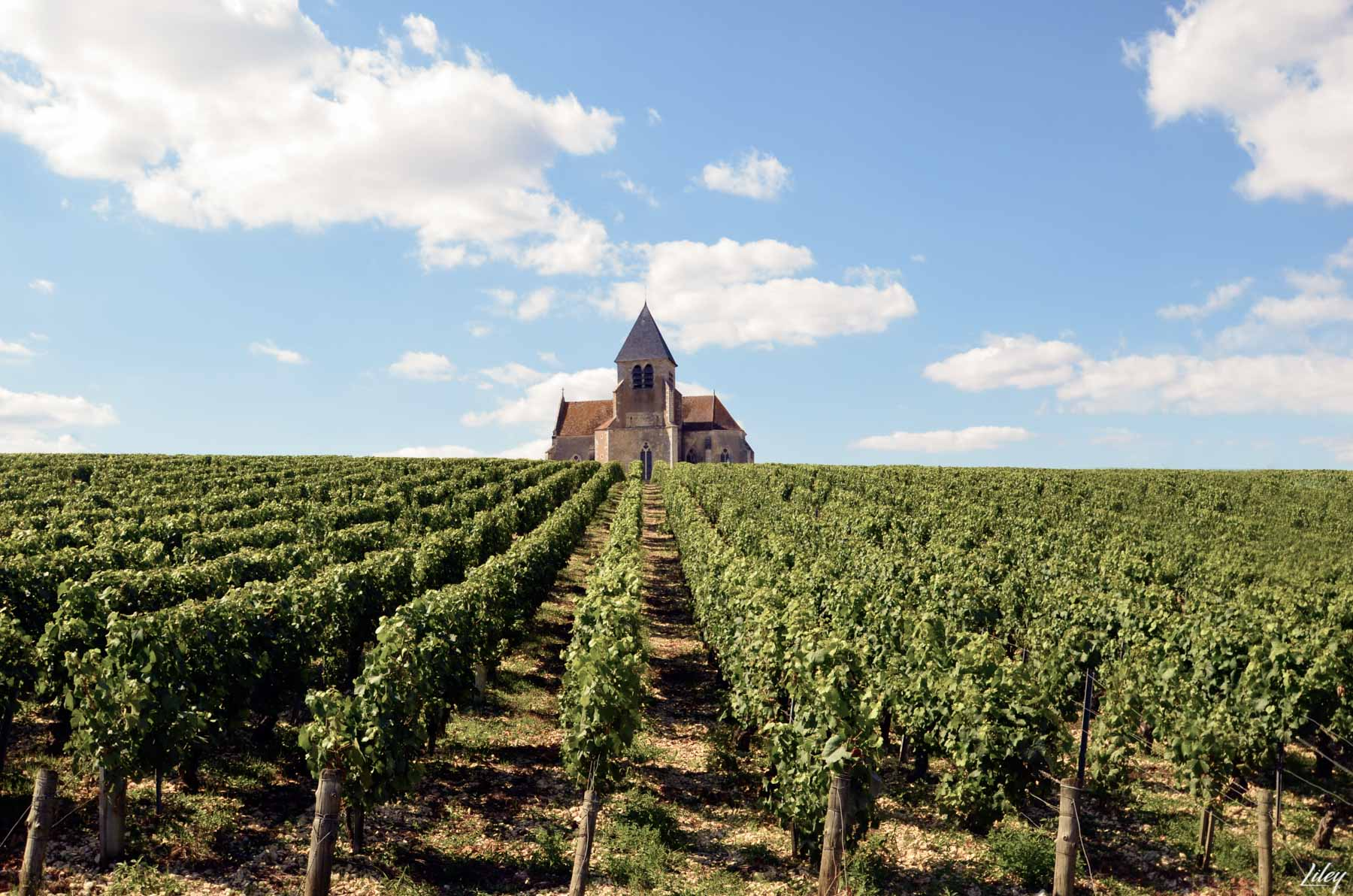 Prehy church, Chablis